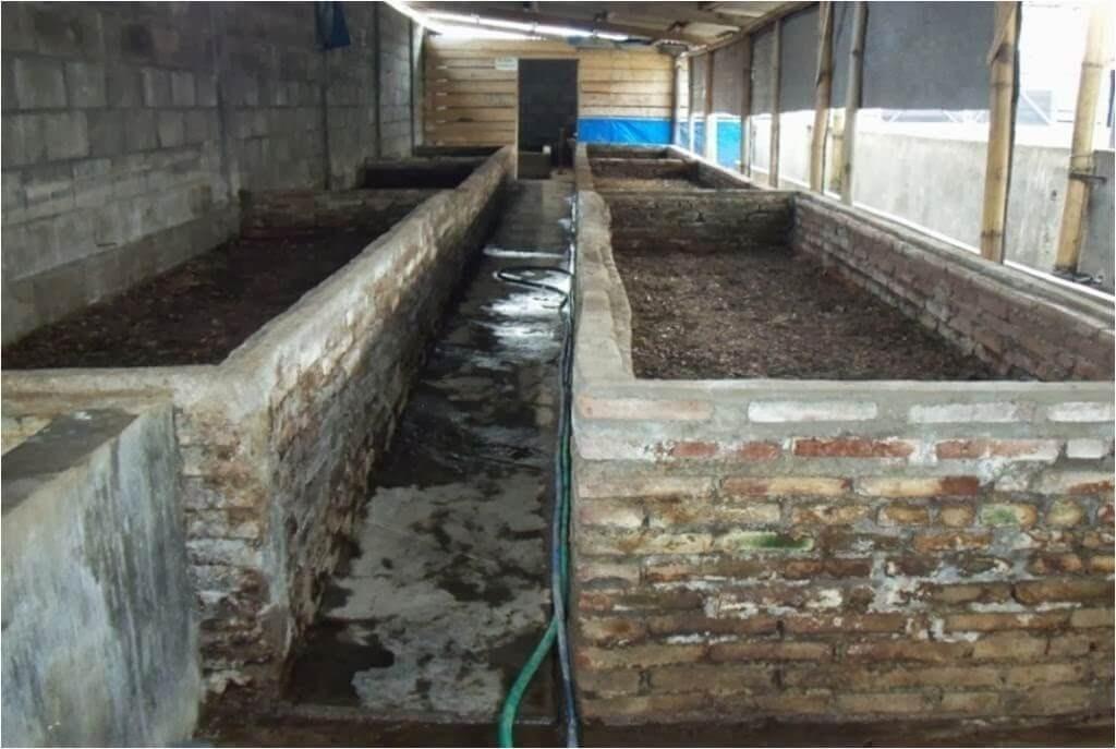 cara ternak cacing tanah