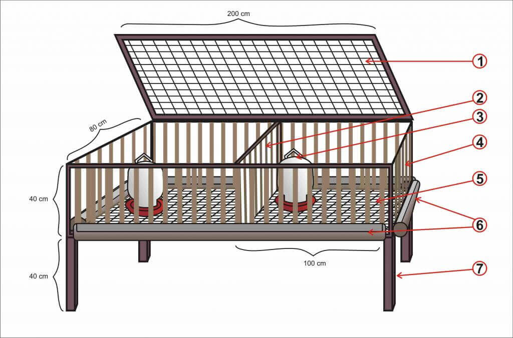 Desain Kandang Anak Ayam
